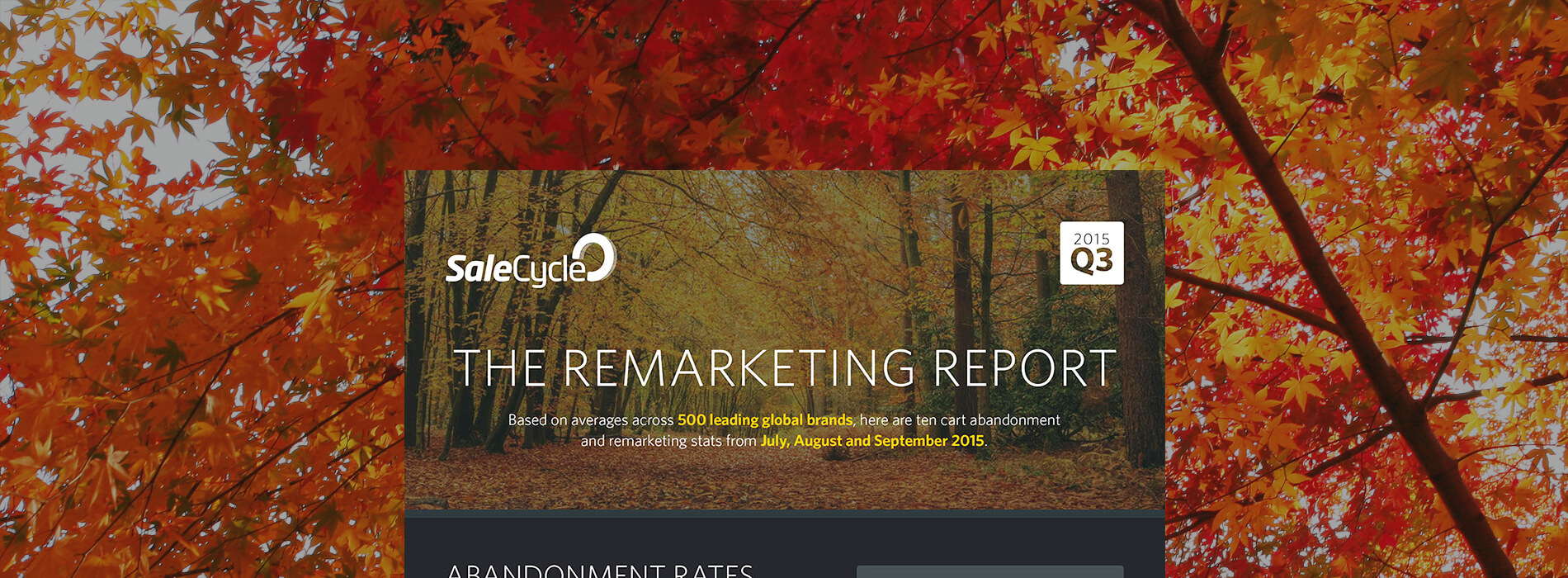[Infographic] The Remarketing Report – Q3 2015